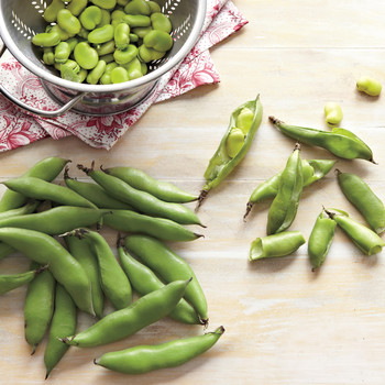 How to Make the Most of Your Fava Beans