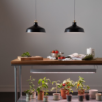 These Indoor Grow Lights Are Surprisingly Chic