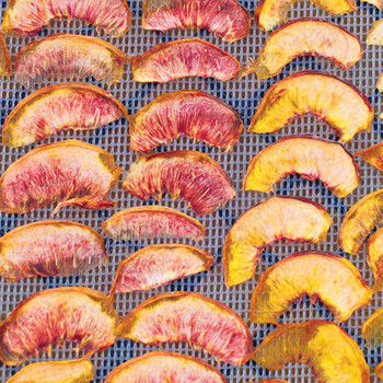 Clingstone, Freestone, White, Yellow, and Donut: The Language of Peaches, Explained