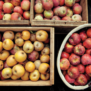 What Does Heirloom Mean For Fruits, Vegetables, and Other Plants?