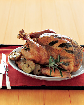msledf_1104_roastturkey.jpg
