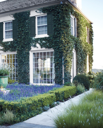 Video Learn To Landscape Your Home With Boxwood Shrubs