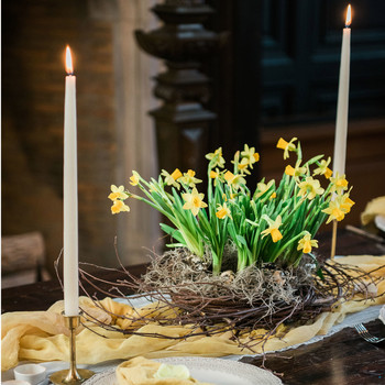 How to Make a Lovely, Living Easter Centerpiece
