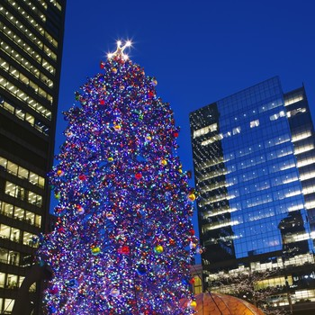 chicago christmas tree - Chicago Christmas Decorations