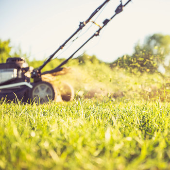 mowing lawn on sunny afternoon