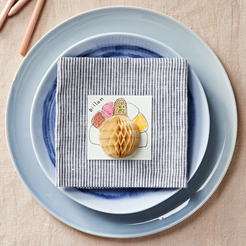 napkin fold turkey craft