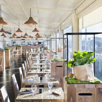 From Artichoke Chairs to Seaweed Lamps, This Restaurant is All-Sustainable