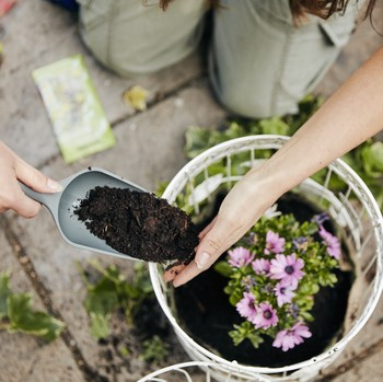 mulching-benefits-getty-0319.jpg