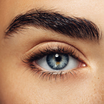 Close up of person's eye and eyebrow