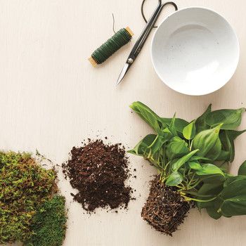 Kokedama: A Japanese Gardening Technique That's DIY-Friendly