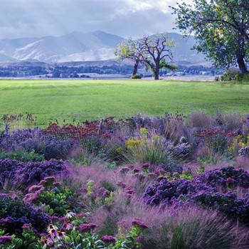 A Landscape Design Masterpiece in the Rockies