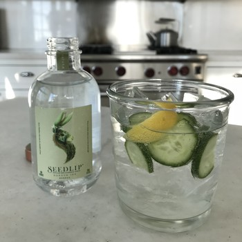 Seedlip with seltzer