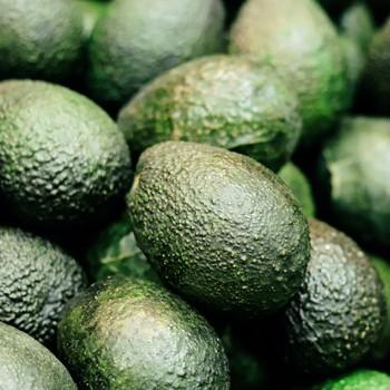 avocado close-up