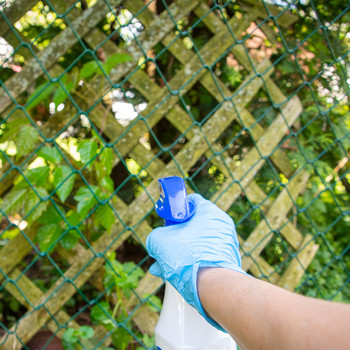 spraying for poison ivy through fence