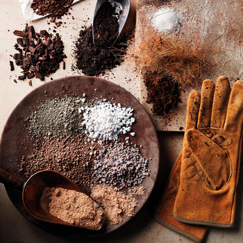 The Best Soil for Every Type of Garden