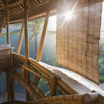 scenic view from a treehouse hotel