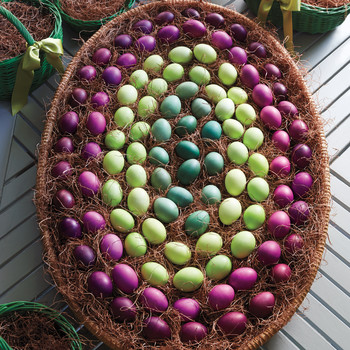 Martha's Green and Purple Eggs