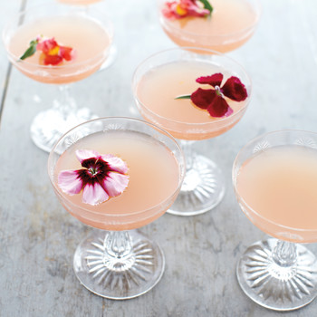 Host a Pretty-in-Pink Rose Garden Party