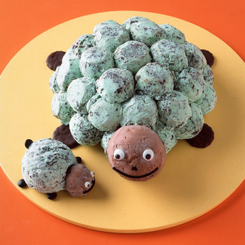 minty chip sea turtle