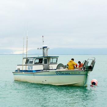 boat salmon fishing