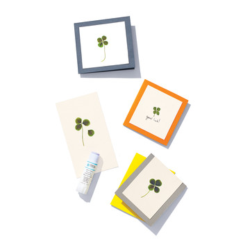Four-Leaf Clover Cards