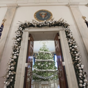 White House Christmas tree of 2016