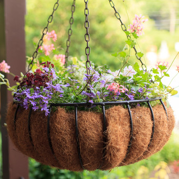 Hanging Basket in Coco Husk