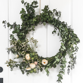 葡萄树假日花环挂在白色的门