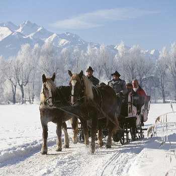 horses pulling people in sleigh in the snow
