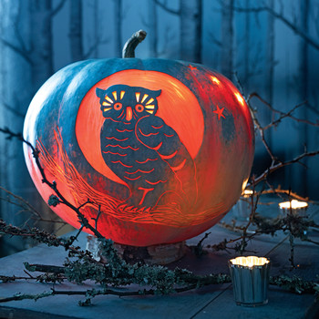Night Owl Carved Pumpkin