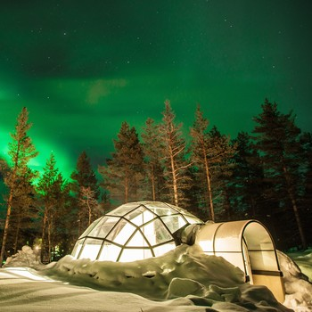 igloos with view of the northern lights