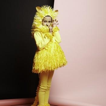 paper-lion-costume