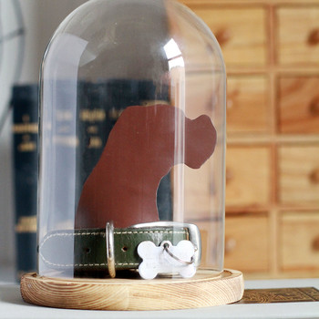 pet keepsake jar
