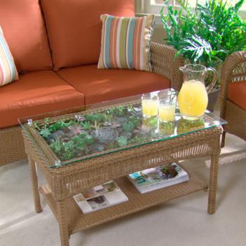 Transform a Table into a Terrarium