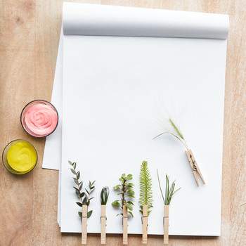 clothespin paintbrushes