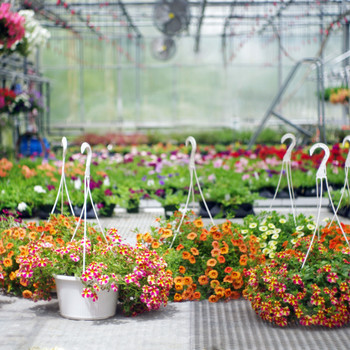 garden center shopping tips