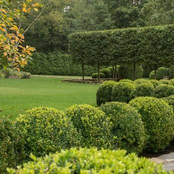 janice parker-designed green garden