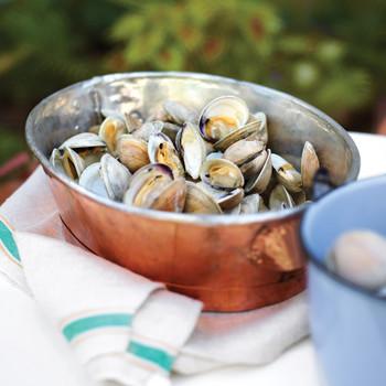mld106444_0311_a100813_08_mussels.jpg