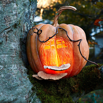 fairy house halloween pumpkin