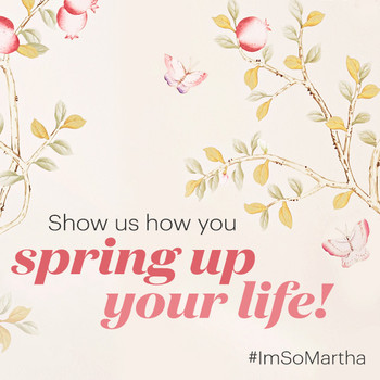 spring up your life martha