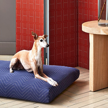 blue moving blanket pet bed with dog
