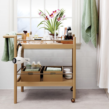 The Cure for Storage-Challenged Bathrooms