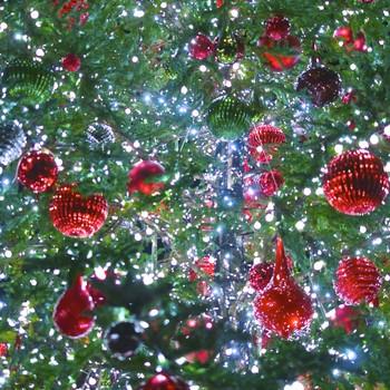 Christmas tree with lights and various bulbs