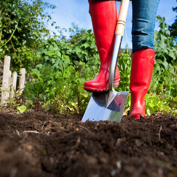 person wearing red rain boots while using shovel in garden
