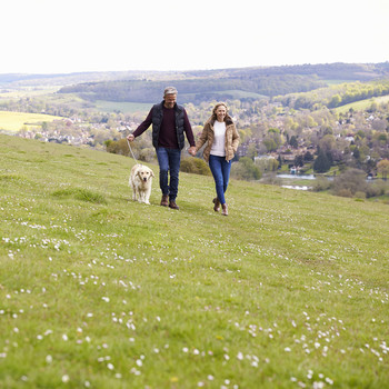 couple walking outdoors with dog