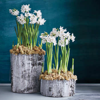 12 Holiday Centerpieces to Spruce Up Any Style of Table