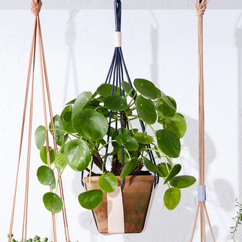 strapped leather planter