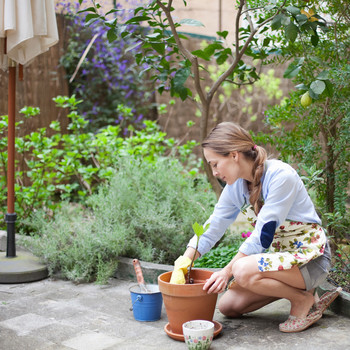 person planting in clay pot while kneeling in backyard area