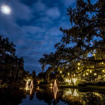 Christmas lights display at Brookgreen Gardens in Murrells Inlet, South Carolina