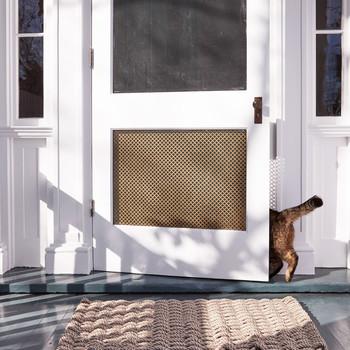 cat entering door with radiator screen